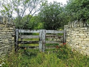 gate-978612_1920.jpg
